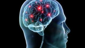 mozkové hemisféry